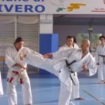 RADUNO gennaio 2011 Karate Do
